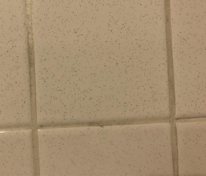 Tile Grout  After
