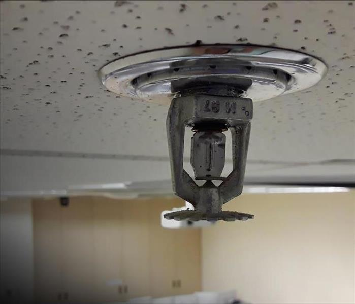 Commercial 5 Ways To Ensure Optimal Fire Sprinkler Performance